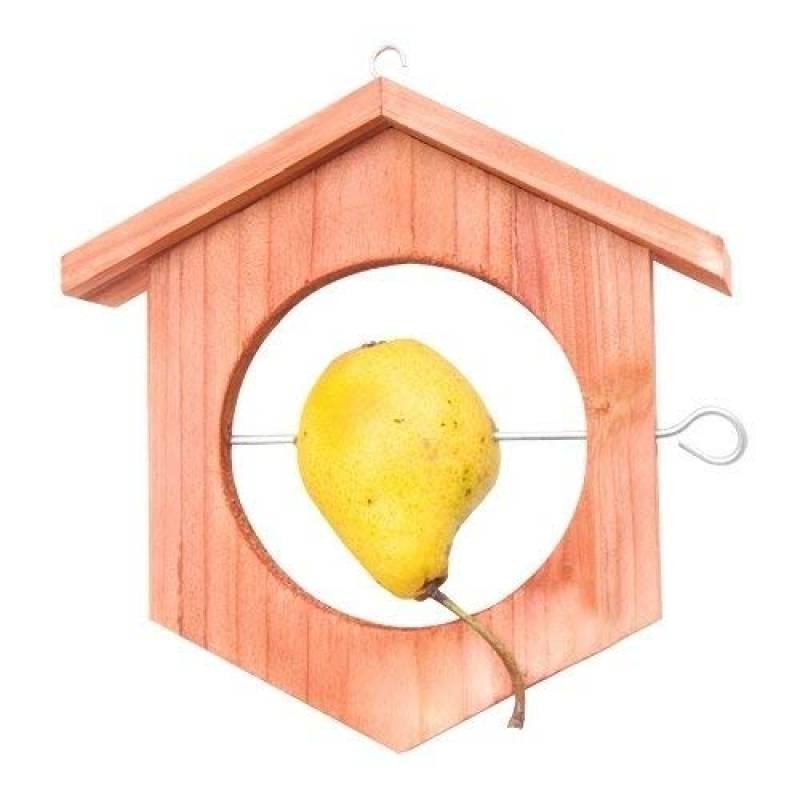 h tel pour oiseaux faire des affaires pour 2018 animaux du jardin. Black Bedroom Furniture Sets. Home Design Ideas