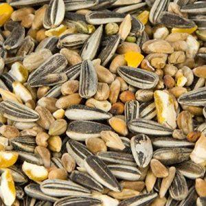 graine de tournesol pour oiseaux 25kg TOP 11 image 0 produit
