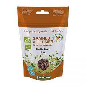GRAINES A GERMER RADIS NOIR BIO de la marque Germline image 0 produit