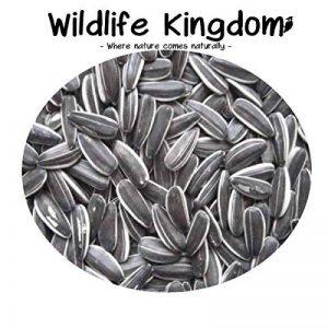 Graines de tournesol à rayures de haute qualité, nourriture de perroquet, oiseau domestique, sauvage, par Wildlife Kingdom de la marque Wildlife Kingdom image 0 produit