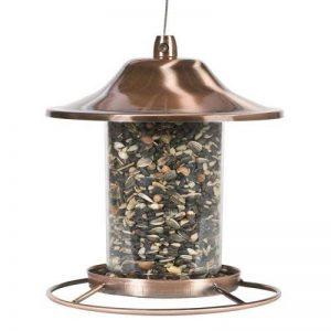 graines oiseaux jardin TOP 3 image 0 produit