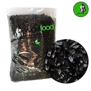 graines tournesol noires TOP 12 image 0 produit