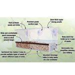 Graybunny Grande mangeoire à oiseauxde luxe avec fenêtre transparente avec trous de drainage, plateau amovible et puissantes ventouses GB-6851 de la marque GrayBunny image 3 produit