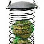Green Jem Ressorts Boule de graisse pour oiseaux sauvages, Noir, 9x 9x 38cm de la marque Green Jem image 1 produit