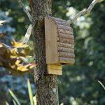 Greenkey 695Medium Bat Box–Bois naturel de la marque Greenkey image 1 produit