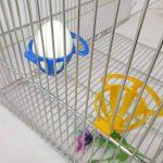 GUBENM 1 PCS Perroquet Oiseaux oiseau mangeoire dispositif d'alimentation, Oiseau Cage Titulaire Perroquet Cage Fruit Feeder Légumes Suspension Panier Conteneur Pet Jouets Oiseau Fournitures de la marque image 1 produit