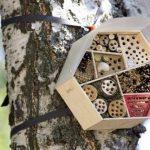 Haba Kit D'Assemblage Hôtel pour Insectes, 301065 de la marque Haba image 2 produit