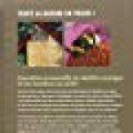 Hôtel à insectes. Abeilles sauvages, bourdons et Cie au jardin de la marque Melanie Von orlow image 1 produit