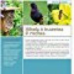 Hôtels à insectes & ruches : Cultiver la biodiversité au jardin de la marque Sébastien Levret image 1 produit