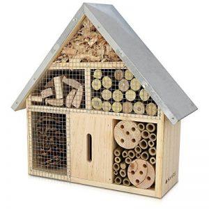 insecte bois maison TOP 9 image 0 produit