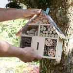 insecte dans maison TOP 10 image 1 produit