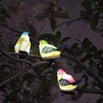 ISOTRONIC Lampe solaire Lampe solaire LED Oiseaux Suspension Outdoor Lampe d'Extérieur Lot de 3maison jardin balcon maison Camping mariage Party de la marque Isotronic image 3 produit