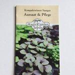 Kit de Graines: 'Graines de Plantes Magiques et chamaniques', 5 Variétés lesquelles sont connues pour Posséder des pouvoirs Magiques dans Un bel Emballage Cadeau de la marque Magic Garden Seeds image 3 produit