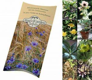 Kit de Graines: 'Graines de Plantes Magiques et chamaniques', 5 Variétés lesquelles sont connues pour Posséder des pouvoirs Magiques dans Un bel Emballage Cadeau de la marque Magic Garden Seeds image 0 produit