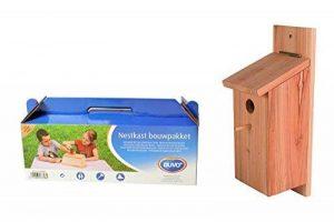 kit nichoir pour oiseaux TOP 8 image 0 produit
