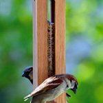 Luxus-Vogelhaus 46770e Mangeoire pour oiseaux en colonne avec réservoir résistant aux UV et câble de suspension en métal Bois de chêne massif de la marque Luxus-Vogelhaus image 3 produit