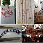 maison papillon TOP 3 image 1 produit
