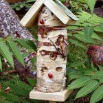 maison pour insectes TOP 0 image 4 produit