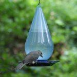 mangeoire automatique oiseaux TOP 1 image 4 produit
