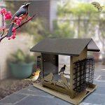 mangeoire automatique oiseaux TOP 7 image 2 produit
