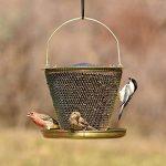 mangeoire bois pour oiseaux TOP 0 image 3 produit
