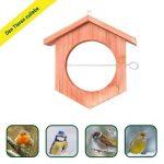mangeoire bois pour oiseaux TOP 4 image 3 produit