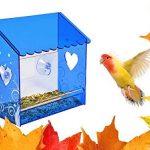 Mangeoire de fenêtre nature, anti écureuil, petite mangeoire en plexiglas avec une vue très claire, un toit bleu et une vision à travers les murs transparent de la mangeoire. Trous de d'évacuations des eaux et ventouses très fortes. Pour toutes les condit image 1 produit
