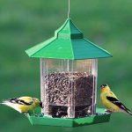 mangeoire extérieure pour oiseaux TOP 1 image 2 produit