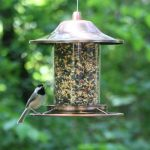 mangeoire extérieure pour oiseaux TOP 2 image 2 produit