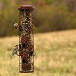 mangeoire oiseau anti ecureuil TOP 7 image 2 produit
