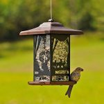 mangeoire à oiseau TOP 3 image 2 produit