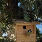 mangeoire oiseaux artisanale TOP 0 image 2 produit