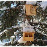 mangeoire oiseaux artisanale TOP 0 image 3 produit