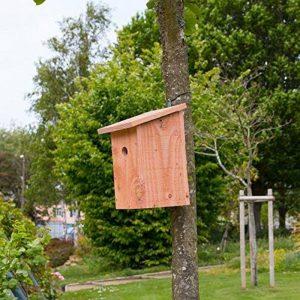 mangeoire oiseaux artisanale TOP 14 image 0 produit