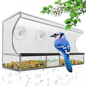 mangeoire oiseaux avec ventouse TOP 4 image 0 produit
