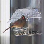 mangeoire oiseaux avec ventouse TOP 8 image 2 produit