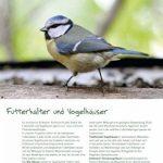 mangeoire oiseaux bois TOP 4 image 3 produit