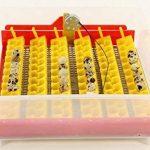 mangeoire oiseaux bouteille TOP 3 image 3 produit