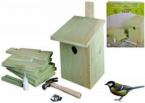 mangeoire oiseaux en kit TOP 3 image 0 produit