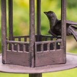 mangeoire oiseaux fonte TOP 6 image 2 produit