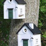 mangeoire oiseaux murale TOP 4 image 2 produit