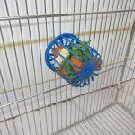 mangeoire oiseaux terre cuite TOP 14 image 1 produit