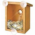 mangeoire à oiseaux TOP 11 image 4 produit