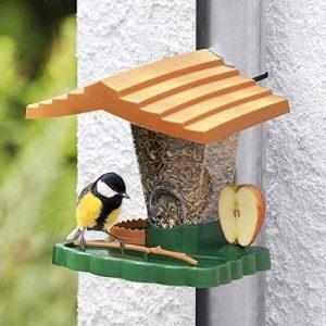 mangeoire à oiseaux TOP 4 image 0 produit