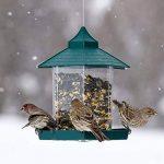 mangeoire trémie pour oiseaux TOP 0 image 3 produit