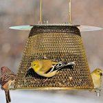 mangeoires oiseaux originales TOP 0 image 1 produit