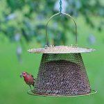 mangeoires oiseaux originales TOP 0 image 2 produit