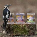 mangeoires oiseaux originales TOP 8 image 2 produit