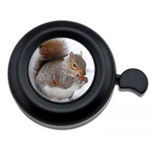 manger écureuil TOP 1 image 0 produit