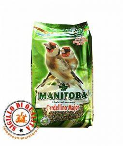 Manitoba Chardonneret Major 2,5kg Aliment Complet pour cardellini de la marque image 0 produit